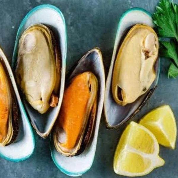 IQF half shell mussel